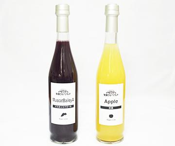 《加賀・加賀フルーツランド》ジュース2本セット(マスカットベリーA、りんご)