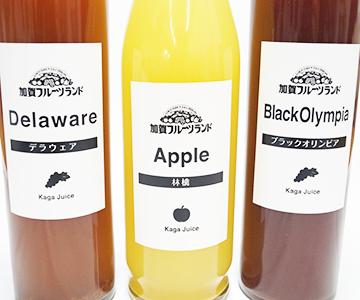 《加賀・加賀フルーツランド》ジュース3本セット(ブラックオリンピア、デラウエア、りんご)
