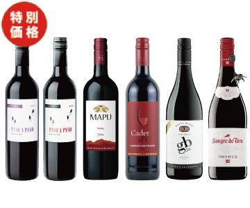 【特価】エノテカ 赤ワイン6本セット