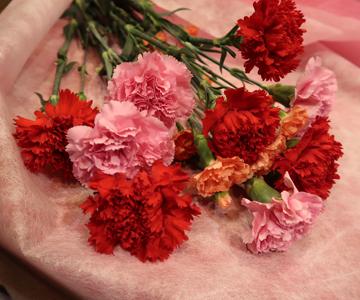 〈フラワーショップ〉カーネーション花束