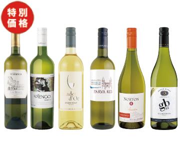 【特価】エノテカ 白ワイン6本セット