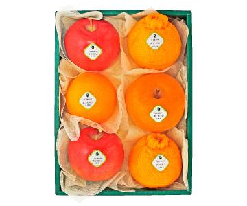 〈日本橋 千疋屋総本店〉 季節の果物詰合せ