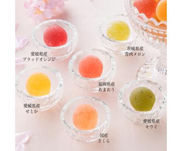 〈ロクメイカン〉プレミアム 旬果 恵みの宝珠(春)  24個入